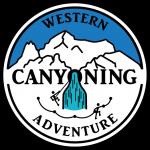 full colour wca logo